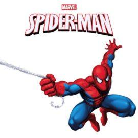 Kit Festa di Compleanno Spiderman L